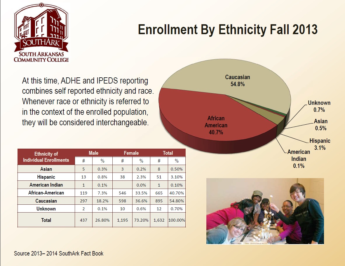 Enrollment by Ethnicity F2013