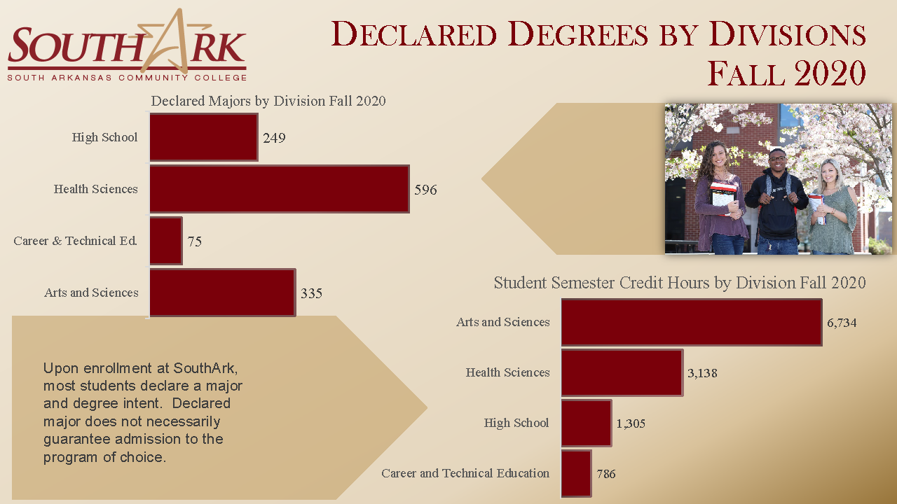 Declared Degrees by Divisions Fall 2020